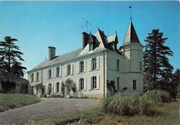¤¤  -  MAREUIL-sur-LAY   -  Chateau De Saint-André     -  ¤ - Mareuil Sur Lay Dissais
