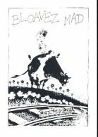 LIDWINE : Carte Postale BD Bloavez Mad - Cartes Postales