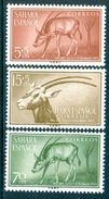 SPANISH SAHARA 1955 Colonial Stamp Day, Scimitar Oryx Set (3v), XF MLH, MiNr 154-6, SG 120-2 - Africa (Other)