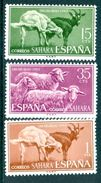 SPANISH SAHARA 1959 Child Welfare, Goats & Sheep Set (3v), XF MVLH, MiNr 243-5, SG 209-11 - Africa (Other)