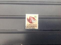 Kenia / Kenya - Schelpen (15) 1971 - Kenia (1963-...)