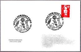 MAGNETITA - MAGNETITE. Saint Philbert De Grand Lieu 1994 - Minerali