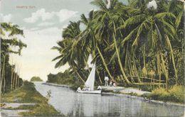 TRINIDAD HART'S CUT - Trinidad