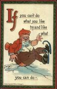 DWIG - Ice Skating Comic IF Series C1910 Postcard - Stripverhalen