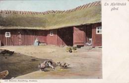 Sweden En Hallandsk gard Farm Scene With Ducks