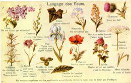 LANGAGE DES FLEURS) - Flowers, Plants & Trees