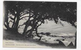 NOIRMOUTIER EN 1924 - UN COIN DE LA COT EPRES SAINT PIERRE - CPA VOYAGEE - Noirmoutier