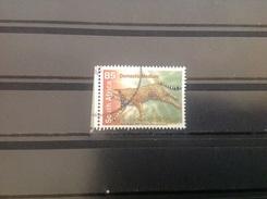 Zuid-Afrika / South Africa - Jachtluipaard (B5) 2007 - Zuid-Afrika (1961-...)