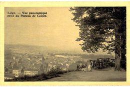 CPA N°11638 - LOT DE 2 CARTES DE LIEGE - VUE PANORAMIQUE PRISE PLATEAU DE COINTE + PANORAMA - Liege