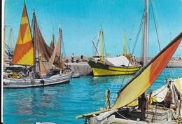 BARCHE DA PESCA A VELA - VIAGGIATA FRANCOBOLLO ASPORTATO - Fishing Boats