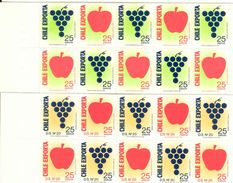 CHILE, 1989, Booklet 10/11, Export, Pair - Chile