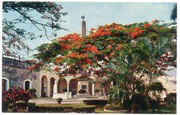 Cpsm Panama - La Hermosa Plaza De Francia .. - Panama