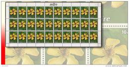 Zaire 1231** 10K  Fleurs - Feuille / Sheet De 30  MNH - Zaïre