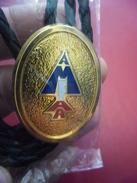 INSIGNE AERO FEMININ MILITAIRE AMFAA Rare En Métal 35 Grammes  Armée De L'air @ 4,5 X 3,3 Cm - Armée De L'air