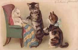 CPA - Chat Humanisé - 3 Chatons - Katzen