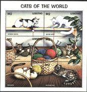 LESOTHO, 1998, FAUNA, DOMESTIC CATS, YV#1265-70, MNH - Domestic Cats