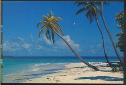 °°° 9409 - BEAUTIFUL MALDIVES °°° - Maldive
