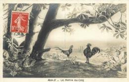 CHANTECLER      LE MATIN DU COQ - Animali Abbigliati