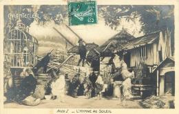 CHANTECLER       L HYMNE AU SOLEIL - Animali Abbigliati