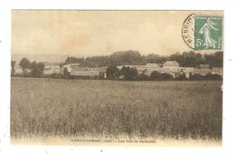 CPA 18 HENRICHEMONT Une Vue De Boisbelle Peu Commune - Henrichemont