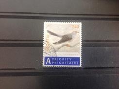 Zwitserland / Suisse - Vogels (240) 2006 - Gebraucht