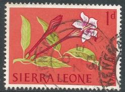 Sierra Leone. 1963 Flowers. 1d Used. SG 243 - Sierra Leone (1961-...)