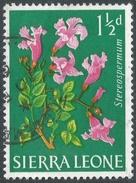Sierra Leone. 1963 Flowers. 1½d Used. SG 244 - Sierra Leone (1961-...)
