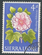 Sierra Leone. 1963 Flowers. 4d Used. SG 247 - Sierra Leone (1961-...)