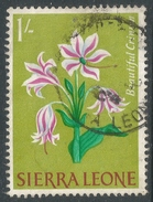 Sierra Leone. 1963 Flowers. 1/- Used. SG 249 - Sierra Leone (1961-...)