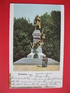 TRIESTE - MONUMENTO D.ROSETTI, VIAGGIATA 1905 - Trieste