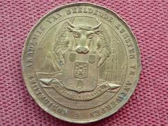 PAYS BAS ??? Jolie Médaille à Identifier - Monetary / Of Necessity