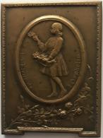 Médaille Bronze. La Fleur De L'Orphelin. G. Devreese. 60x45 Mm - 71gr - Professionali / Di Società