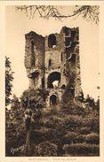 25982. Postal SAINT BRIEUC (Cotes D'Armor). Tour De CESSON - Saint-Brieuc