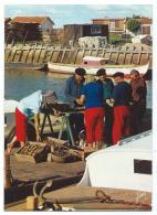 CP ANIMEE BASSIN D'ARCACHON, LE TRIAGE DES HUITRES, GIRONDE 33 - Arcachon