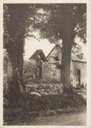(BE691) EN ARDENNE. ... UNUSED - Belgique