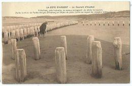 Moliets Pres De L'estuaire On Assaye De Devier Le Courant - France
