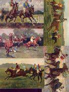Courses Hippiques : Lot De 5 CP Anciennes - Equitation