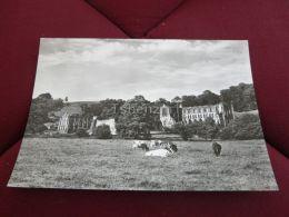 Rievaulx Abbey Yorkshire England - England