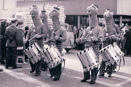 Bâle, Carnaval (70) 10x15 - BS Bâle-Ville