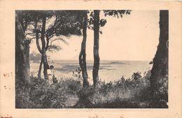 NOIRMOUTIER  -  ( Sans Edts Nommé Ni Legende Caus Effacee Par Censure..voir Verso  ) - Noirmoutier