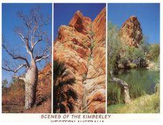 (111) Australia - (with Stamp At Back Of Postcard) - WA - Kimberley NP - Australie
