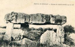DOLMEN ET MENHIR(SAINT FORT SUR LE NE) - Dolmen & Menhirs
