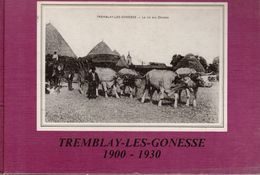 "Catalogue Cp  "" Tremblay Les Gonesse  1900-1930 "" - Books"