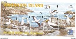 2003 Ascension Birdlife International Masked Booby Bird Ouiseau Miniature Sheets Of 5 MNH - Ascension (Ile De L')