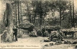 DOLMEN ET MENHIR(LES BRUYERES DE SEVRES) - Dolmen & Menhirs