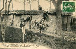 DOLMEN ET MENHIR(BAGNEUX) - Dolmen & Menhirs