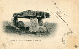 DOLMEN ET MENHIR(COGNAC) SAINT FORT - Dolmen & Menhirs