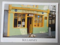 IRLANDE KERRY KILLARNEY  COURTNEY SHOP MAGASIN - Kerry