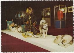 Artifacts From Last RCMP DOG PATROL 1969, RCMP MUSEUM, Regina, Saskatchewan, Canada - Regina