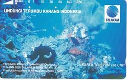 TARJETA DE INDONESIA DE CORALES  (MARINE LIFE- PEZ-FISH) 280 UNITS - Peces